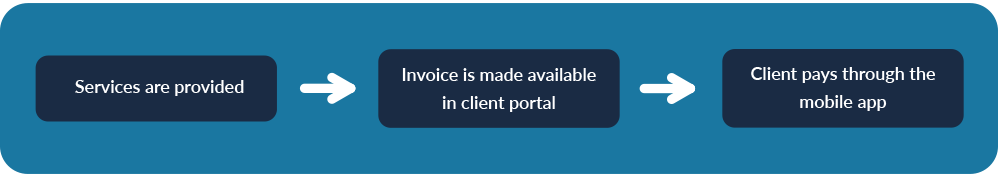 client portal billing graphic